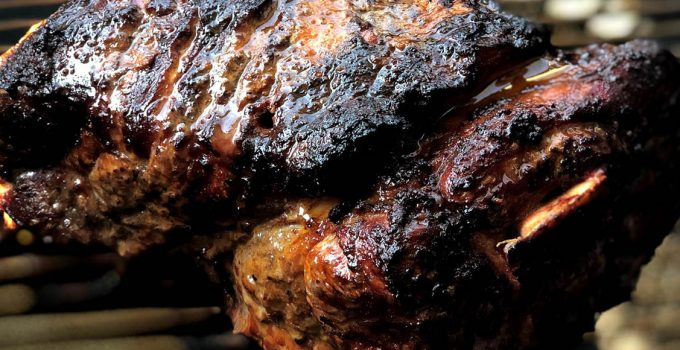 Electric smoker tips to prepare incredible smoked delights